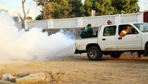 Lahj governorate hit by mosquito-borne dengue fever outbreak