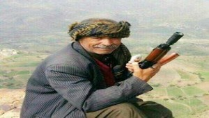 Houthis kill, kidnap prominent tribal sheikhs and residents in Ibb