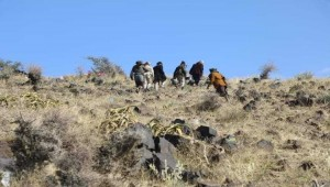 Yemeni Army forces claim control of strategic hills on Taiz's Red Sea coast