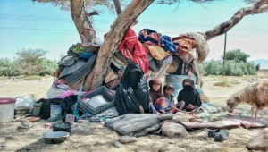 25,000 families expected to flee violence in Al-Jawf over 24 hours