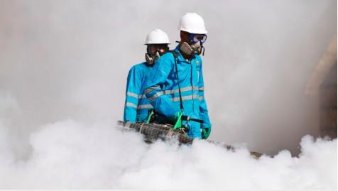 More dengue fever deaths in Taiz