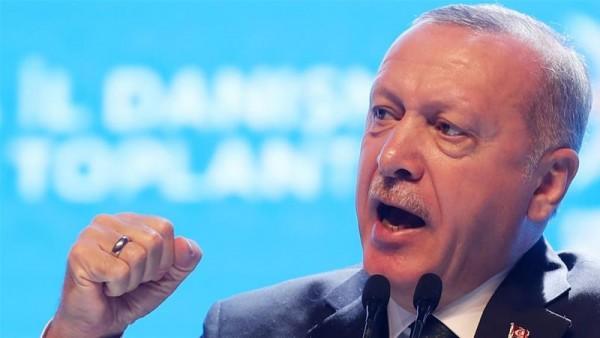 Turkey's Erdogan discusses Syria, refugees with European leaders